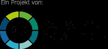 Logo dsin